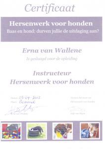 Instructeur Hersenwerk voor Honden 2013