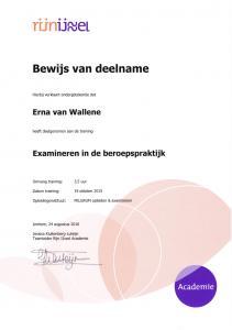 Examineren in de beroepspraktijk. RijnIJssel college